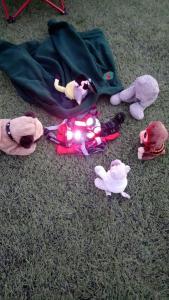 teddy bear cub camp